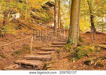 Blue Tourist Signpost On Tree Near Wooden Stairway Leading To Kokorin Castle In Kokorinsko Landscape