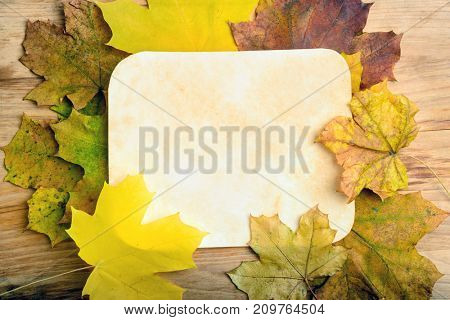 Old grunge paper page over fall leaves on wooden table