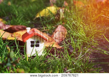 a doll house on the green grass next to the autumn yellow foliage and sunlight, close up