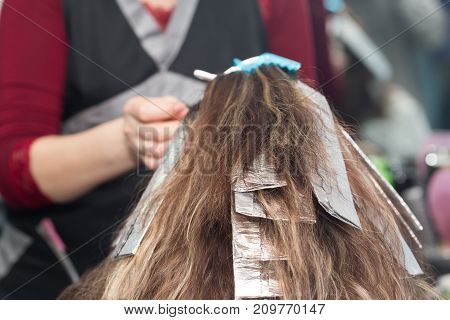 hair coloring in a beauty salon . photo in the studio