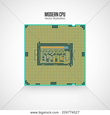 A modern computer processor. Back side. Realistic vector illustration isolated on white background.