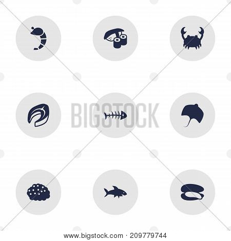 Collection Of Stingray, Crustaceans, Lobster And Other Elements.  Set Of 9 Sea Icons Set.