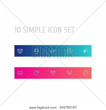 Collection Of Lion, Sheep, Turtle And Other Elements.  Set Of 10 Zoology Outline Icons Set.