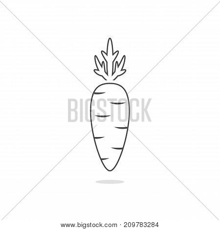 thin line simple carrot icon on white background