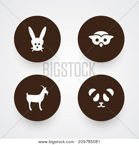 Collection Of Bear, Night Fowl, Livestock And Other Elements.  Set Of 4 Alive Icons Set.