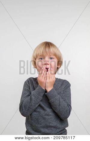 Vertical fine portrait of caucasian boy. Handsome happy child, on grey background