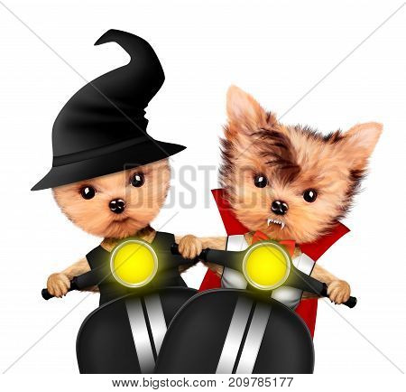 Funny cartoon animal Dracula and witch sit in black bike. Halloween and Dead day concept. Realistic 3D illustration.