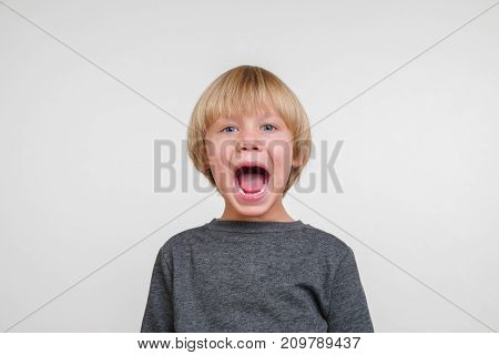 Cute horisontal portrait of handsome happy child, photo on grey background