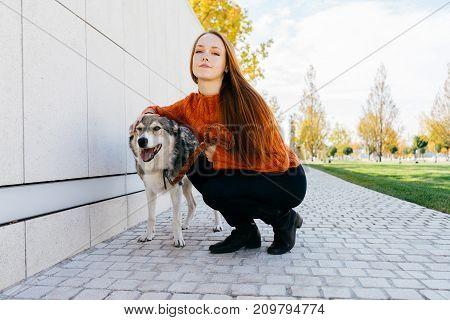 girl walking a dog in an autumn park