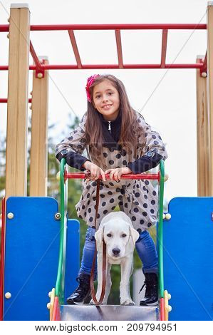Funny doggie walking with owner on the playground. Pet with girl outdoors on a natural background. Animal concept.