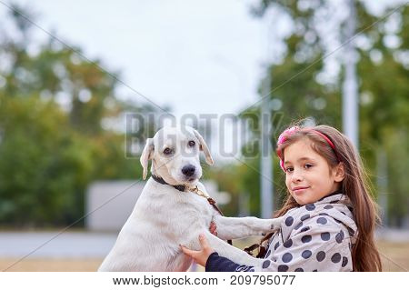 Funny doggie walking with owner in the park. Pet with girl outdoors on a natural background. Close-up of dog. Animal concept.