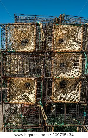 Traps for catching octopus and fish in the sea close-up