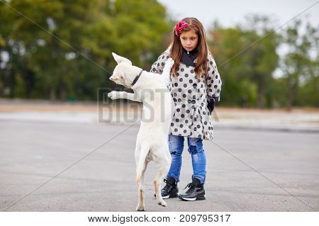 A cute little lady with doggie playing on the street. Having fun together outdoors on the nature background. Full length of pet with owner. Animal concept.