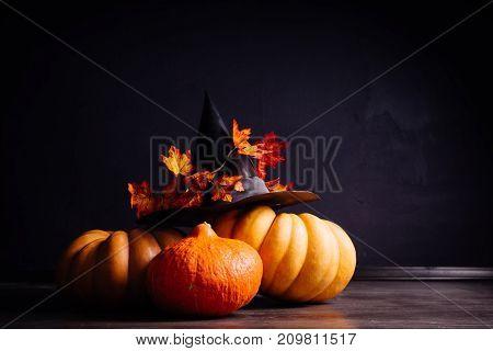 a few pumpkins in a hat for halloween
