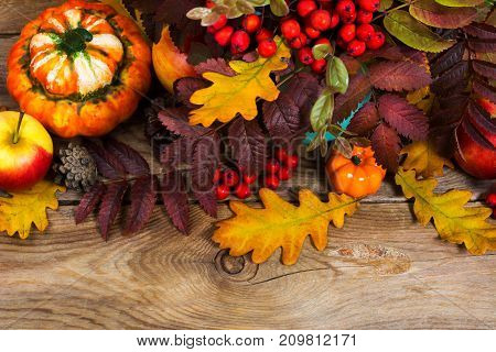 Thanksgiving Or Fall Background With Red Berries, Pumpkins, Rowan