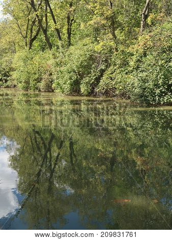 The verdant and still water of the Maumee and Erie Canal is reflected near Grand Rapids Ohio. poster