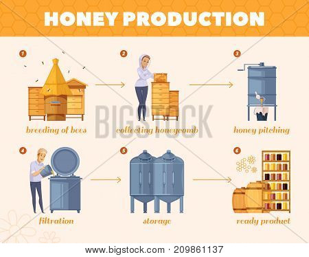 Apiary honey production cartoon flowchart poster from  bees breeding collecting honeycombs to storage infographic composition vector illustration