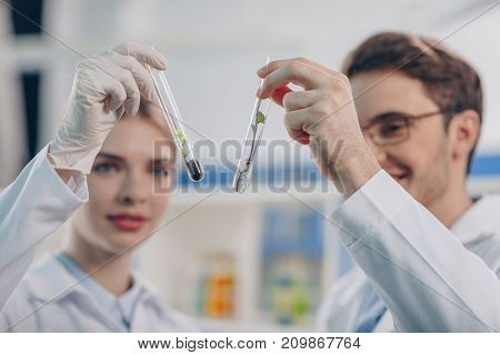Biologists Looking At Flasks With Plant