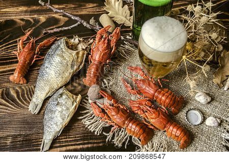 Beer with foam in glass and dried salted fish and with boiled red crayfish on canvaslying on dark wood boards