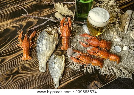 Dried salted fish and beer with foam in glass and with boiled red crayfish on canvas lying on dark wood boards