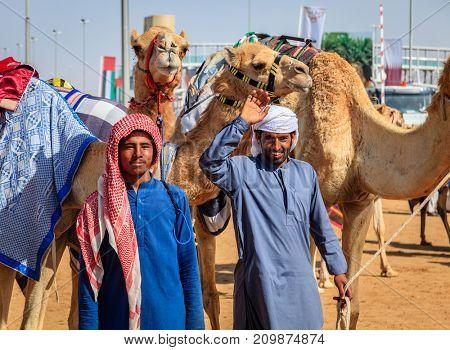 Dubai, United Arab Emirates - March 25, 2016: Camel handlers with their animals at Dubai Camel Racing Club