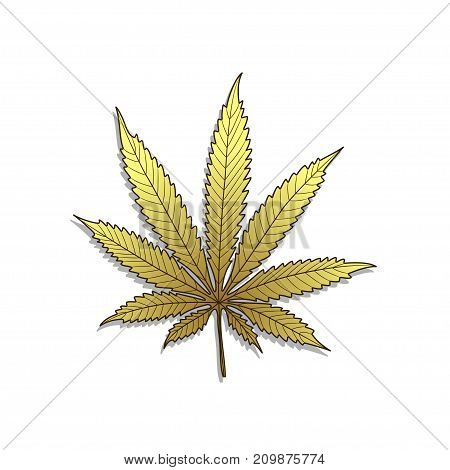 Illustration of golden cannabis on a white background