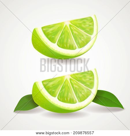 Slices of lime isolated icon . Realistic vector illustration.