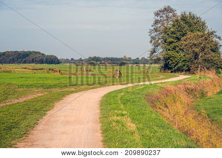 Meandering sand path in picturesque rural landscape at the end of a sunny day in the fall season.