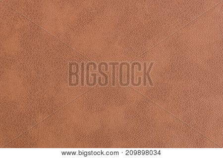 Skin Texture Brown Color