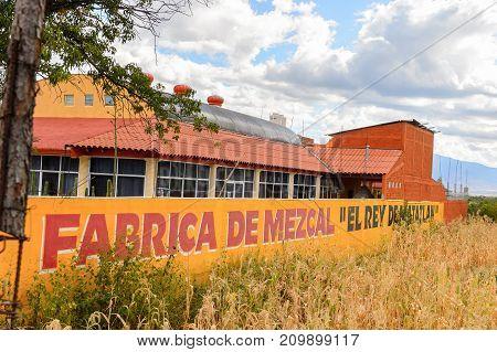 Fabric Of Mezcal