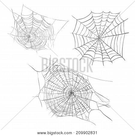 Spiderweb sketch vector illustration. Spider web hand drawing set collection spider web