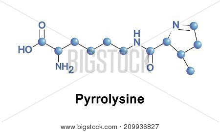 Pyrrolysine is an alpha-amino acid that is used in the biosynthesis of proteins in some methanogenic archaea and Bacteria