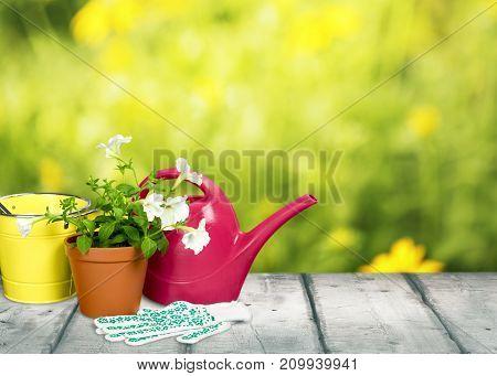 Garden utensil gardening utensils pot green color