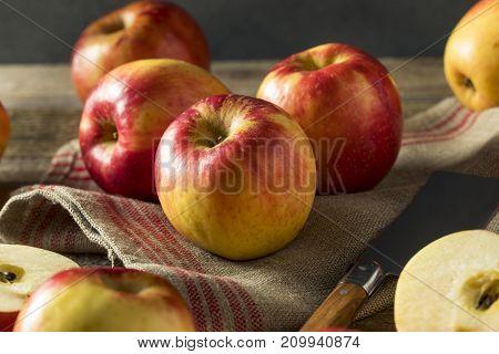 Raw Red Organic Sweet Tango Gala Apples
