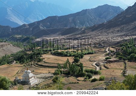 Mountain valley: fields on the terraces descending from the slopes green trees white Buddhist stupa in front high Tibet.