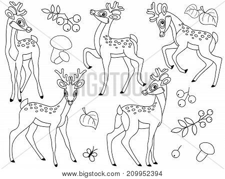 Vector set of black and white cute cartoon deers. Vector forest deers, mushrooms, berries and leaves. Vector  baby deer. Deers vector illustration