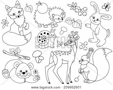 Vector set of black and white cute wild animals in the forest. Set includes fox, deer, bear, hedgehog, squirrel, snail and rabbit. Vector woodland animals. Forest animals vector illustration