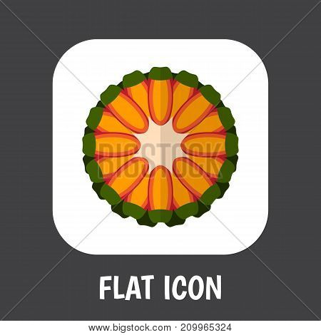 Vector Illustration Of Berry Symbol On Tropical Fruit Flat Icon
