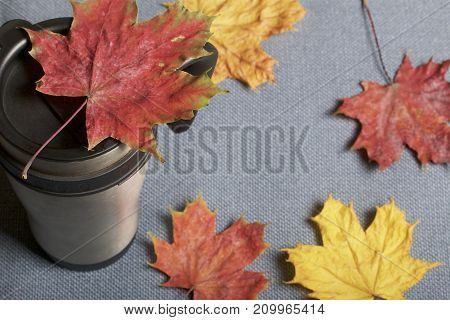 A Thermo Mug, Standing On A Gray Cloth. It Is Strewn With Fallen Autumn Leaves Of Different Colors.