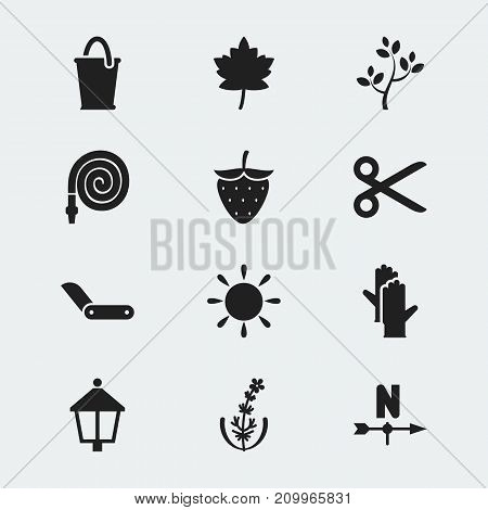 Set Of 12 Editable Gardening Icons. Includes Symbols Such As Breeze Direction, Lilac, Strawberry And More