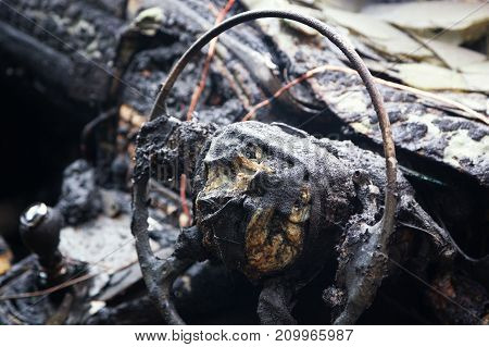 Inside of a burnt out car showing metal remains of a steering wheel with foam pieces gear stick and the dashboard.