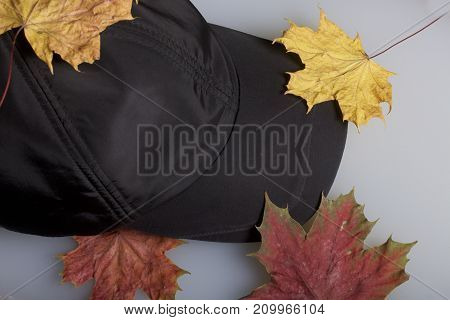 Black Sports Hat, Strewn With Autumn Fallen Leaves. On A White Background.
