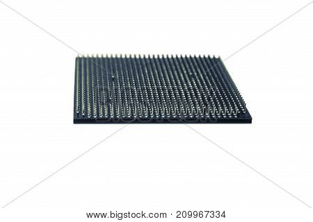CPU pins isolated on white background. White