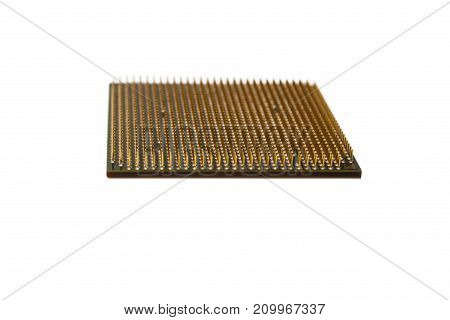 CPU gold pins isolated on white background