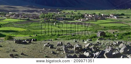 Mountain village: white peasant houses stand among green fields of barley on a background of dark mountains on the front of a pile of stones summer in the Himalayas.