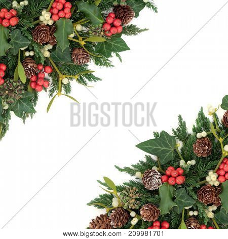 Winter and christmas border with holly, ivy, mistletoe, fir and pine cones on white background.