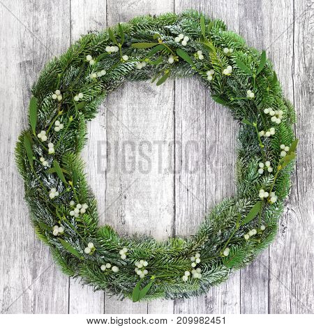 Winter wreath with mistletoe, snow covered blue spruce and juniper fir on rustic white wood background.