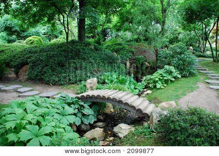 Japanese Garden With A Bridge