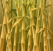 design of bamboo trees illustration background creative composition poster