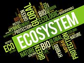 Ecosystem word cloud conceptual green ecology background poster